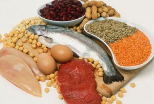 Protein in its simplest form is a macronutrient found within organic material and is most abundant in animal sources such as meat, fish, eggs and dairy products